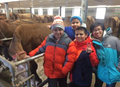 Heifer Farm Tour And Chores