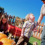 Pumpkin Patch 2014 - 116_4436.JPG