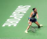 Flavia Pennetta - 2015 WTA Finals -DSC_3886.jpg