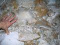 Whiterock Cave, gypsum needles in the 1954 Series 2007 | photo © Matt Kirby