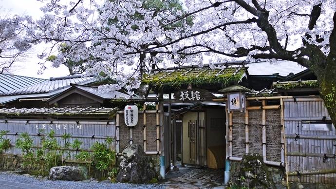 25 京都 嵐山渡月橋 賞櫻 櫻花 Saga Par 五色霜淇淋 彩色霜淇淋