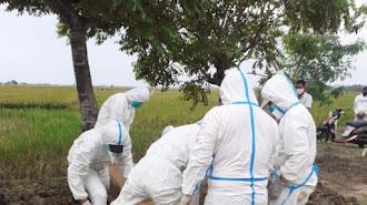 Genting di Karawang!, Selama Dua Hari Terpapar Virus Corona Hampir 400 Orang dan Meninggal Selama Pandemi Total 683