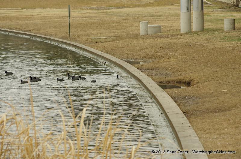 01-26-13 White Rock Lake - IMGP4363.JPG