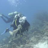 Bonaire 2011 - PICT0042.JPG
