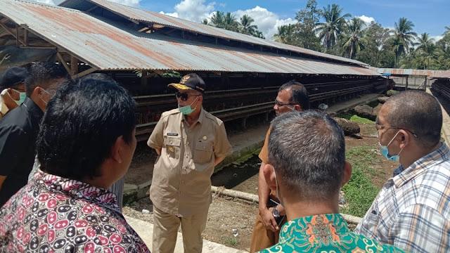 Foto: Wagub Sumbar Nasrul Abit Ketika Kunjungi Peternakan Ayam.