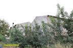 ex pistacchieto Monte Sara - foto di Domenico Oliveri