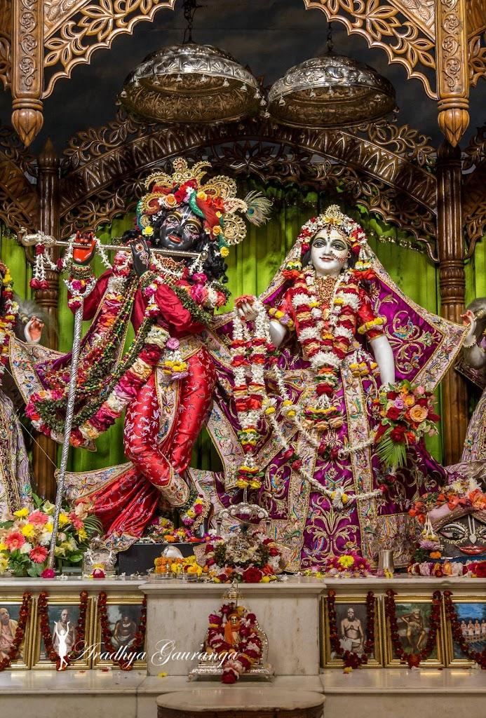 ISKCON Mayapur Deity Darshan 11 Jan 2017 (34)
