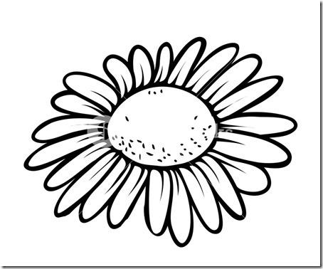 flore sencillas para colorear  (21)