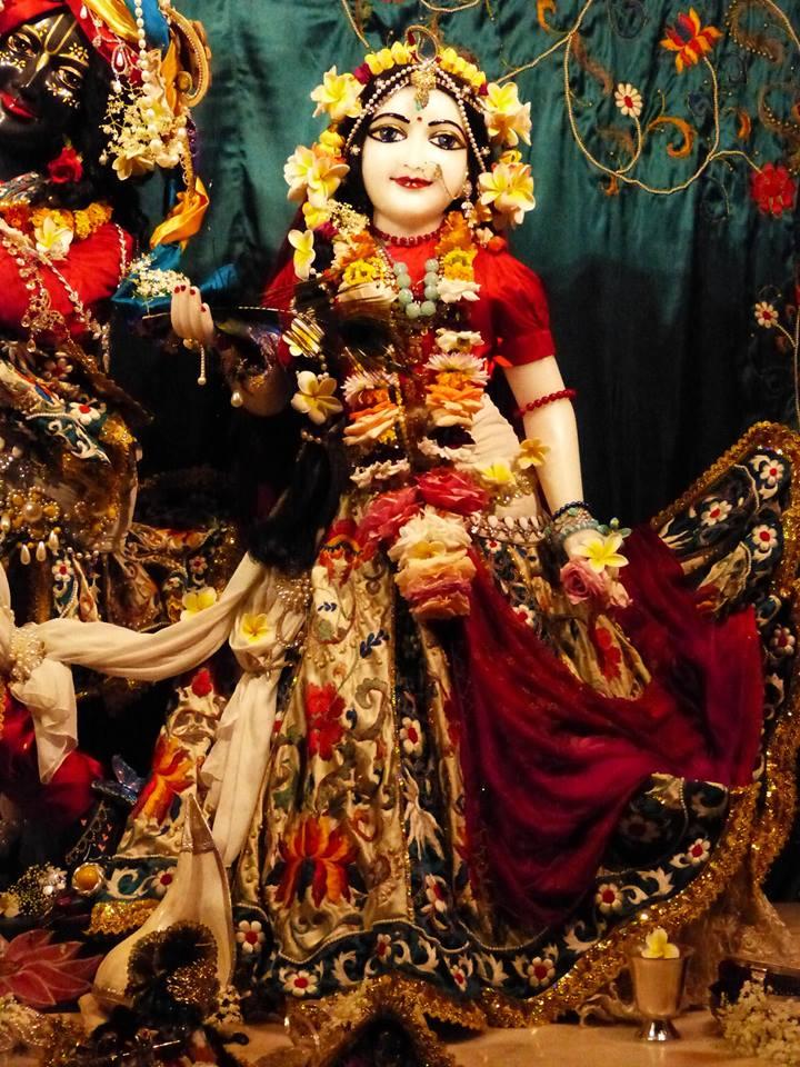 ISKCON New Govardhan Deity Darshan 12 Mar 2016 (8)