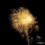 KESR - Frite Nite - 2012-76.jpg