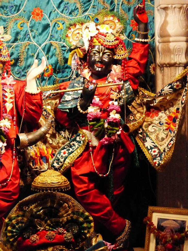 ISKCON New Govardhan Deity Darshan 12 Mar 2016 (2)