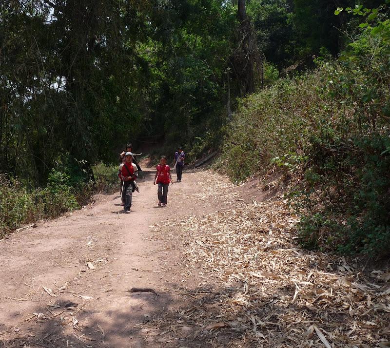 Chine: randonnée xishangbanna, région de Bada - Picture1%2B1004.jpg