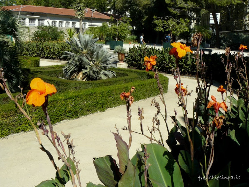 le jardin des plantes de montpellier frenchies in paris. Black Bedroom Furniture Sets. Home Design Ideas