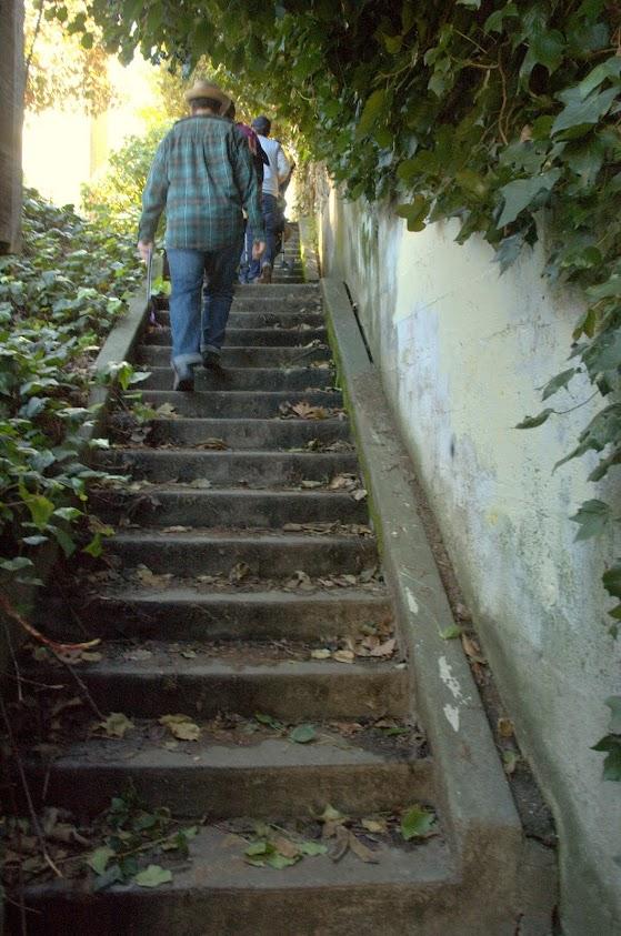 November walk: Lakeshore to Park Blvd. @ Oakland | California | United States