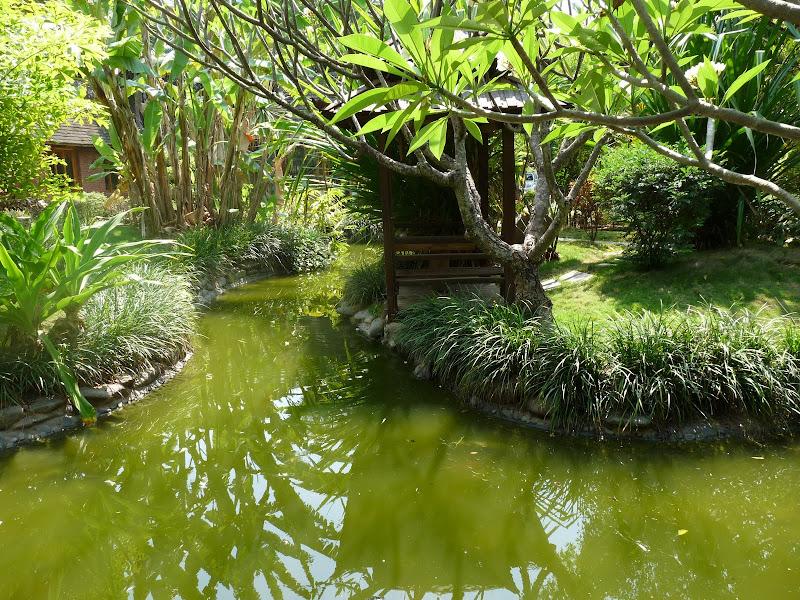 Chine .Yunnan . Lac au sud de Kunming ,Jinghong xishangbanna,+ grand jardin botanique, de Chine +j - Picture1%2B549.jpg