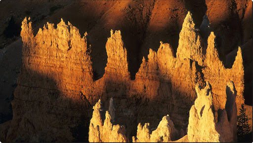 Morning Light, Bryce Canyon, Utah.jpg