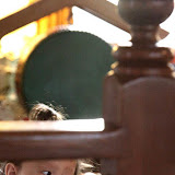 Monthly Molam prayer for Tibet at Sakya Gompa - May 5th 2012 - 08-cc0011%2BB%2BPrayers%2B72.jpg