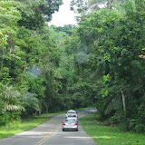 Dans le Soberania National Park (Canal Zone, Panamá), 1er novembre 2014. Photo : J.-M. Gayman