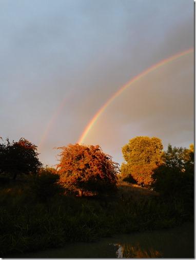 10 double rainbow
