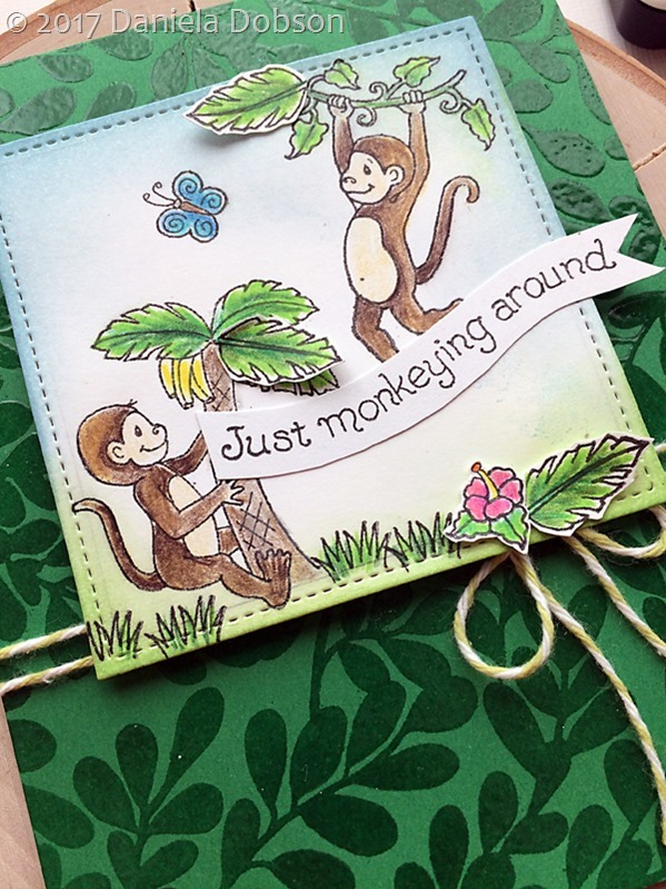 Monkeying around close 2  by Daniela Dobson