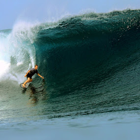 Big Wave  by Paul Kennedy - Sports & Fitness Surfing ( surfing )