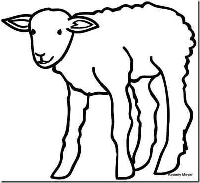 00 - ovejas para colorear (9)