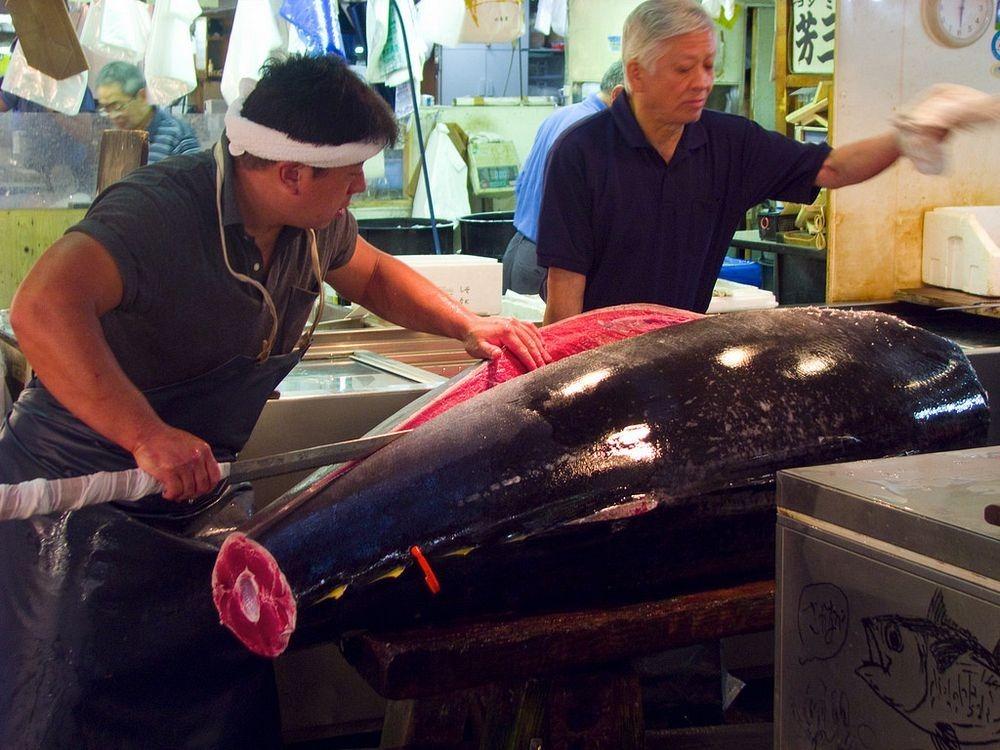 tsukiji-fish-market-5