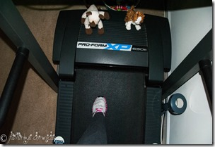 on the treadmill manual edited with JERF