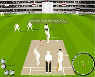flash cricket game