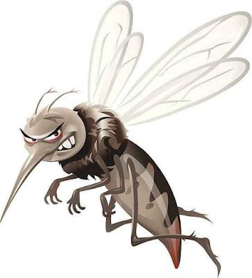 मच्छर से जुड़े 10 रोचक तथ्य
