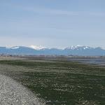 2011_04_08_Centennial_Beach_Boundary_Bay_RP