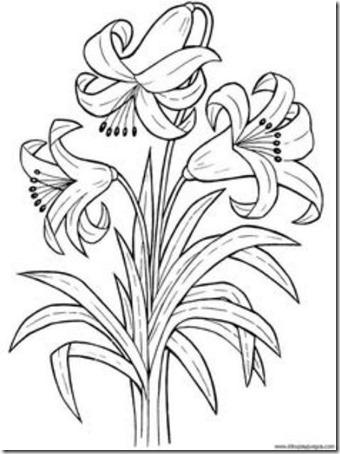 flores masdibujos  (24)