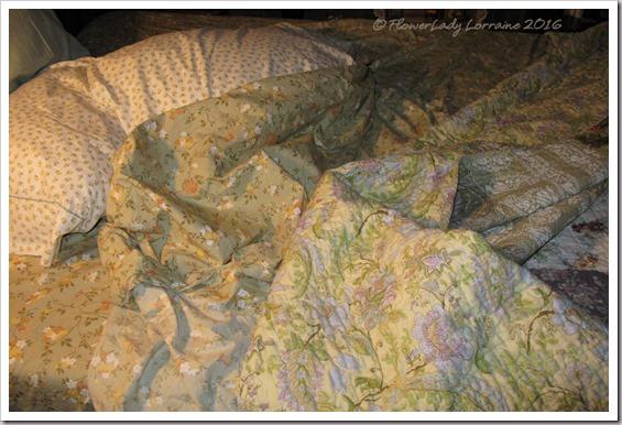 06-07-bedding