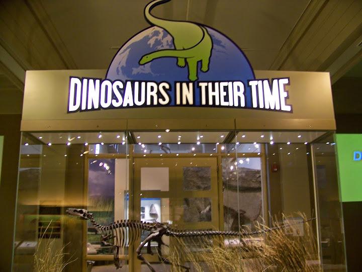 Exploring Pittsburgh Carnegie Museum of Natural History Wandering