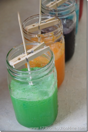 put stick in sugar water to make rock candy
