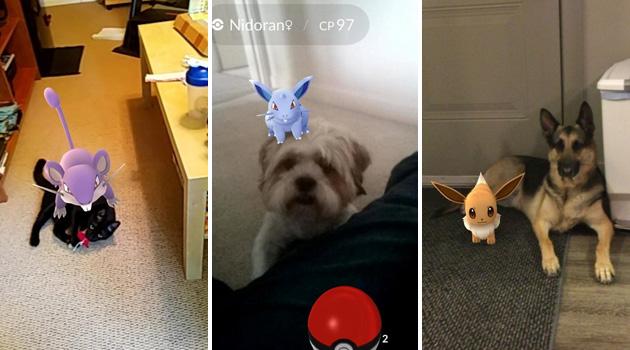 Pokémons e animais