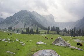 Overlooking the rest house from Jahaz Banda meadow, Upper Dir.