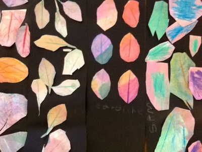 Waitsfield Elementary Art: Kindergarten Leaf Rubbing Collages
