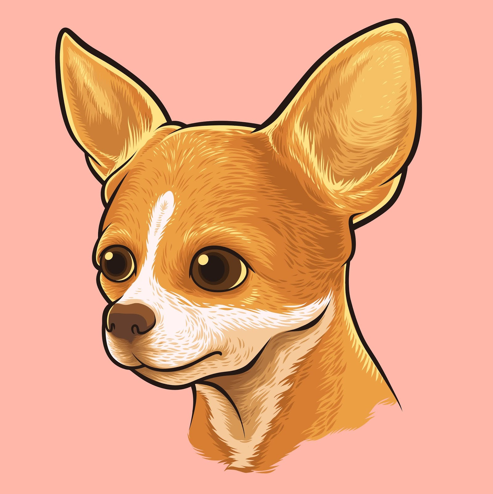 Chihuahua Dog Portrait.jpg Free Download Vector CDR, AI, EPS and PNG Formats