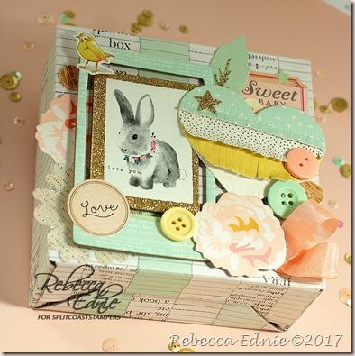 SCS 01 bunny box wm