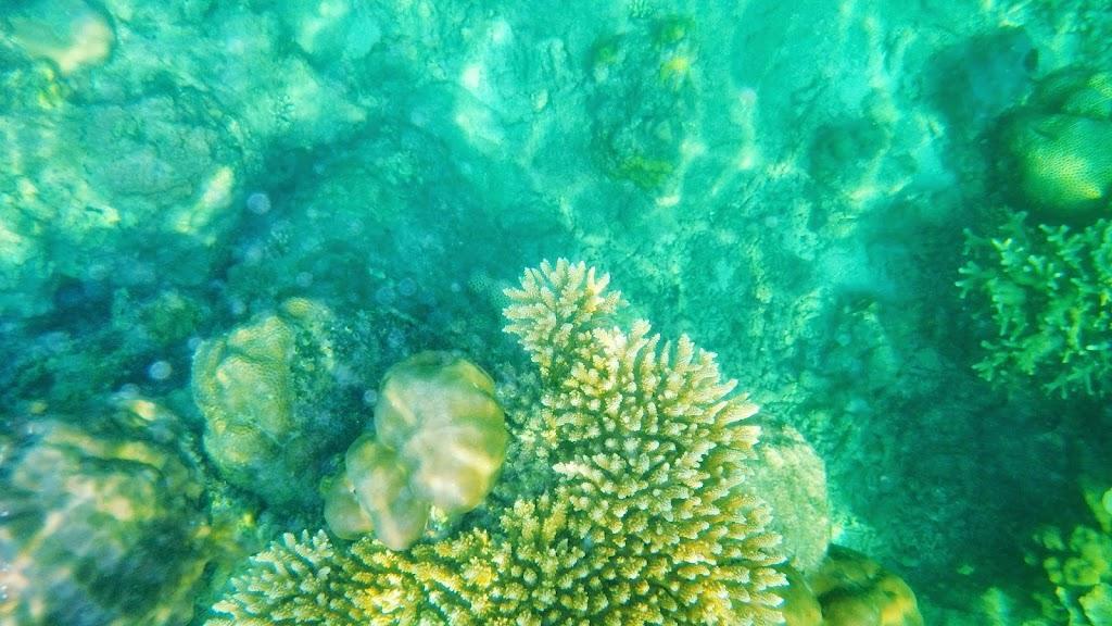 ngebolang-pulau-harapan-5-6-okt-2013-pen-04