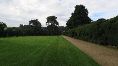 Montacute Hedge
