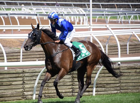 race 6_vanity_rimraam 10
