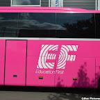 Pink Setra Besseling (11).jpg