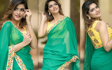 Subalakshmi Rangan Latest Stills In Green Georgette Saree Photos