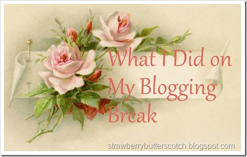 What I Did on My Blogging Break