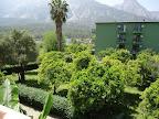 Фото 8 Larissa Hotel Beldibi