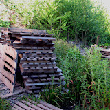 Ольге Волеговой - за деревянные поддоны для дорожек, а Александру Кондакову за то, что их привез