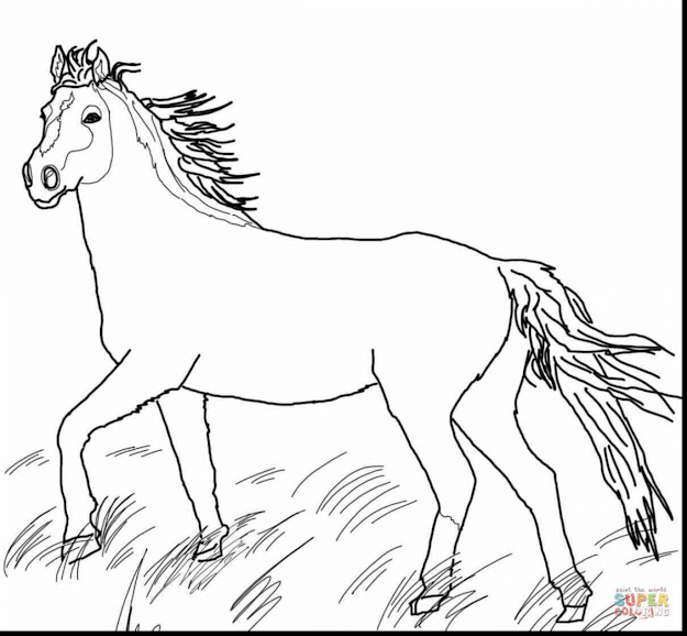 Superb Wild Horse Coloring Pages With Horse Coloring Pages And Horse  Coloring Pages