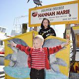 Dolphin Cruising in Destin, Florida